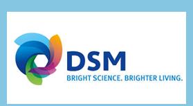 DSM - blauw